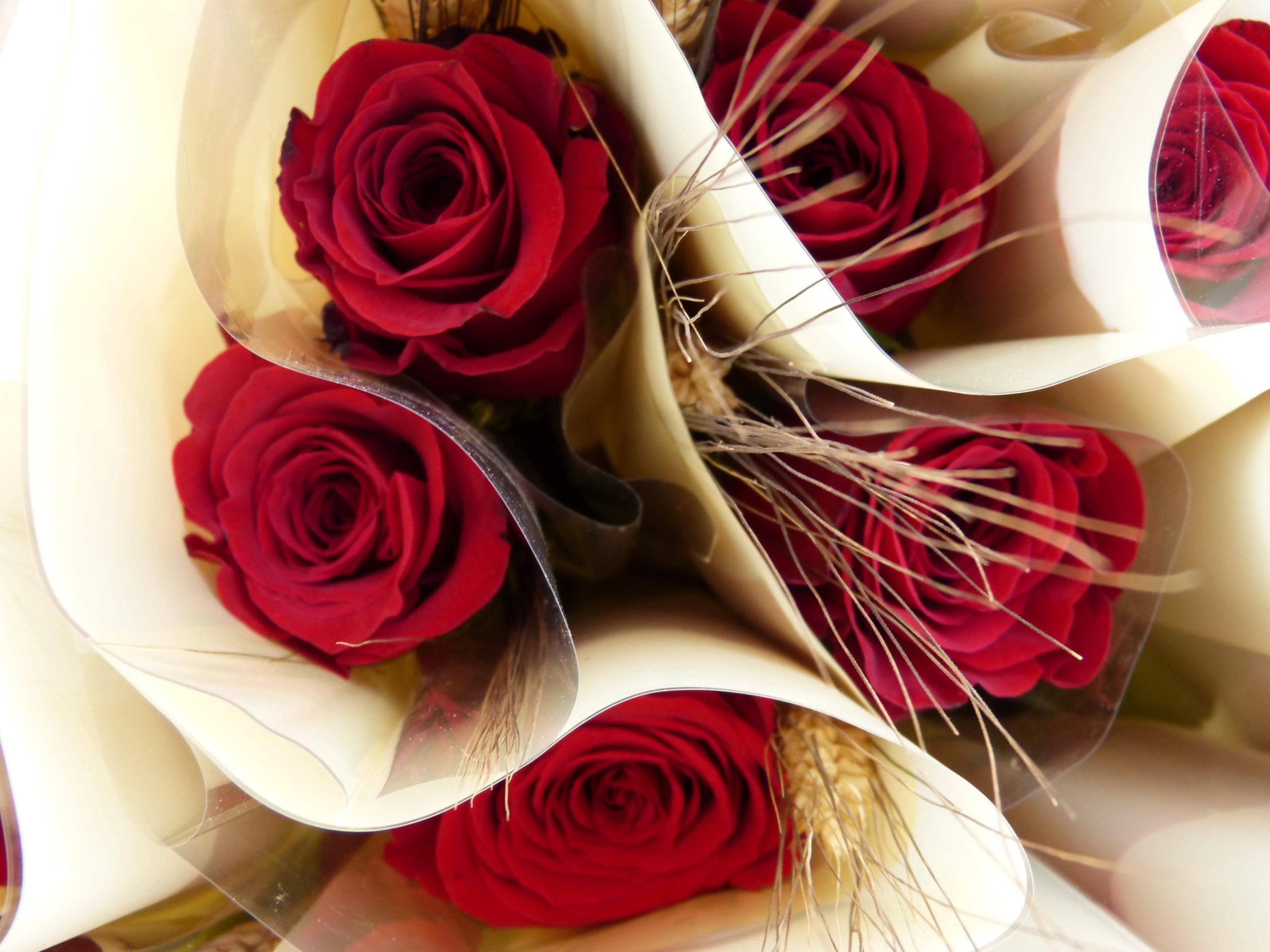 Una rosa per a cadascú